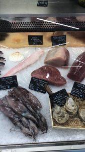 rôzne druhy rýb v MyFish, kde nakupuje Naty