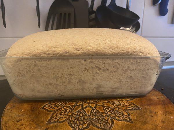 takto jednoducho si každý podľa postupu od Naty upečie svoj celozrnný kváskový chlieb